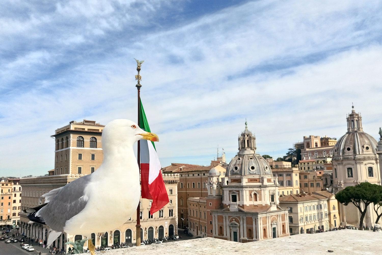 am Piazza Venezia in Rom, vegan essen in Rom