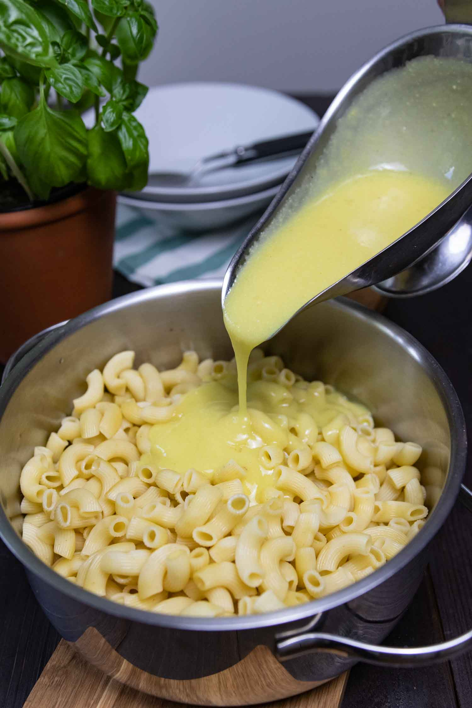 Käsesoße wird mit Nudel gemischt